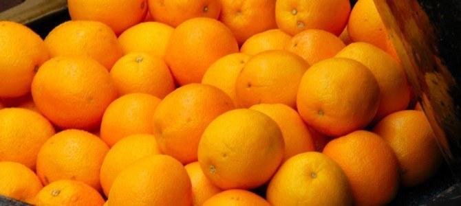 En Japón ya son capaces de desarrollar biocombustible con naranjas